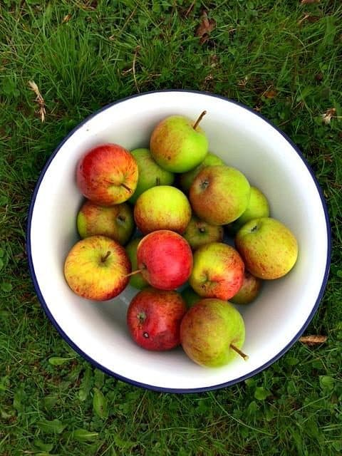 Photo looking down at green and red apples in a white bowl