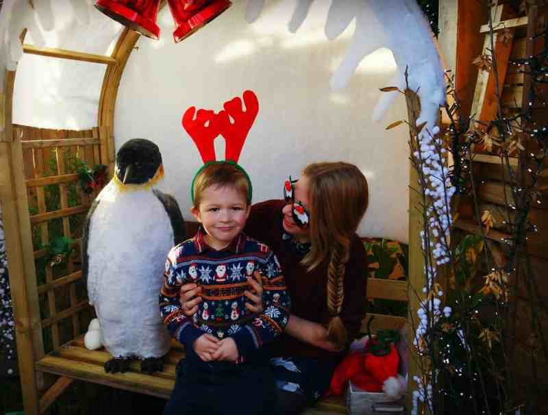 Little boy sitting on mums lap smiling wearing a Christmas Jumper and reindeer antlers