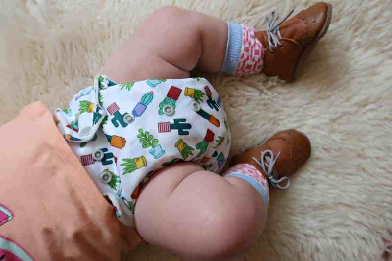 Baba and Boo succulents cloth nappy