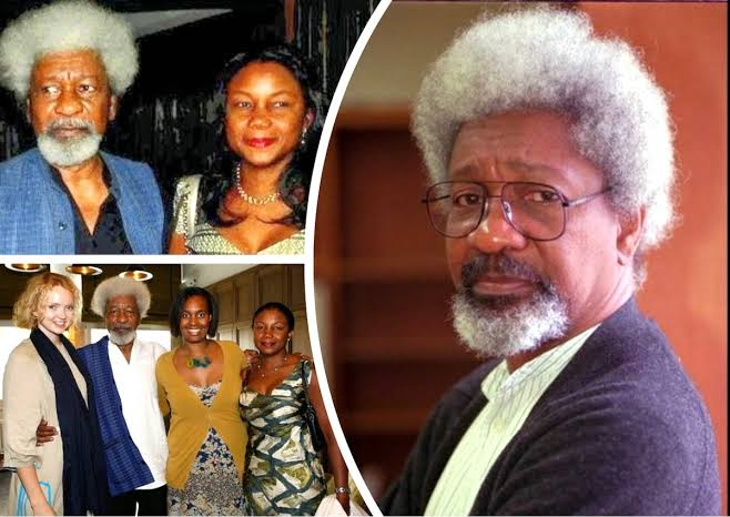 Soyinka @86: Stakeholders Tie National Development to Data