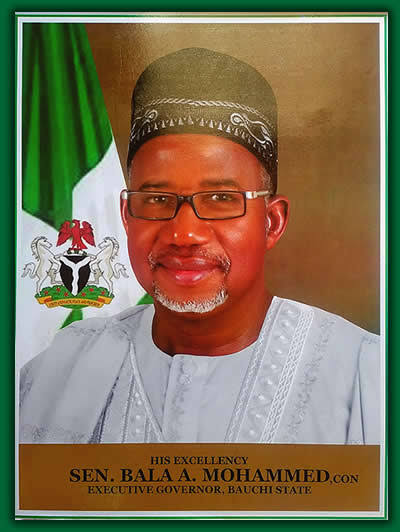 Bauchi Governor Appoints Special Assitant on Unmarried Women Affairs