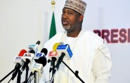 FG Approves Selected Airlines for Int'l Flight Resumption