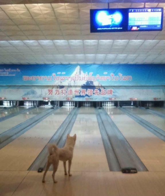 luang prabang bowling