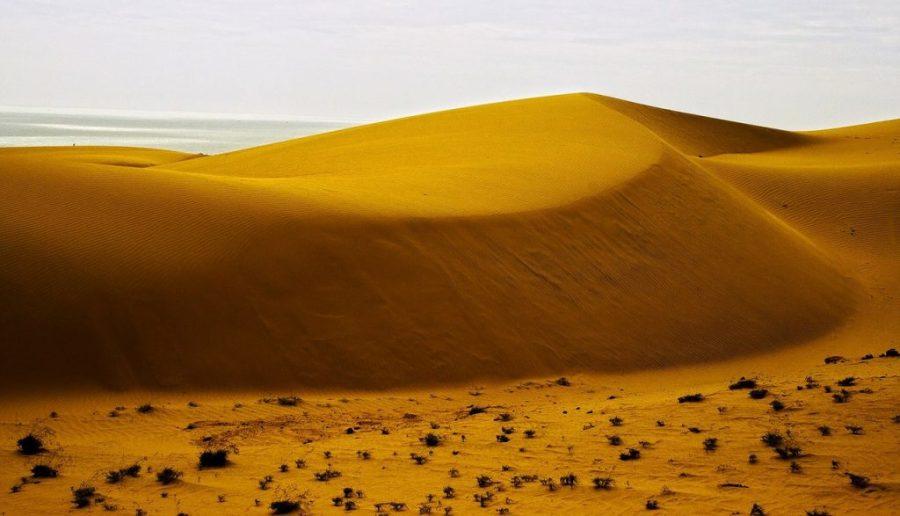 sand-dunes-164510_1280.jpg