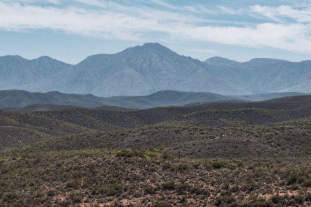 klein karoo safaris south africa