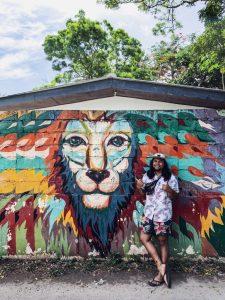 mirissa sri lanka street art