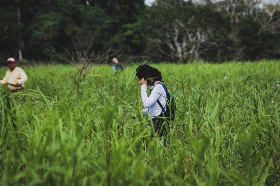 rurrenabaque pampas bolivia