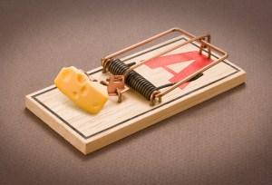 A Better Mousetrap?