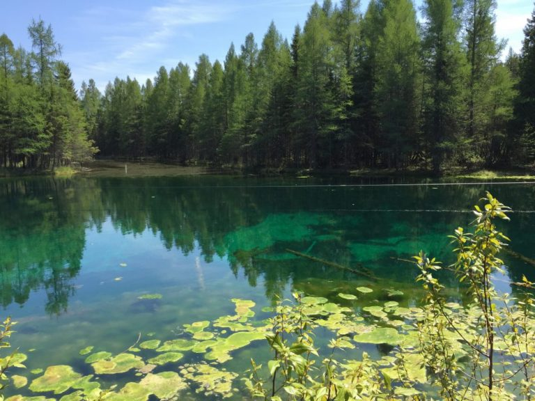 kitch-iti-kipi, pasty trail, the big spring, manistique, palms book state park