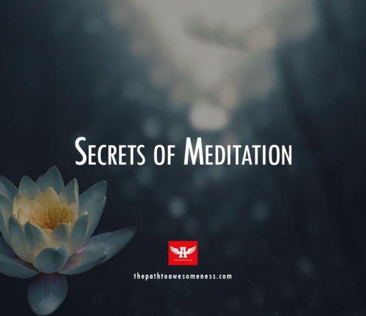 lotus flower above water