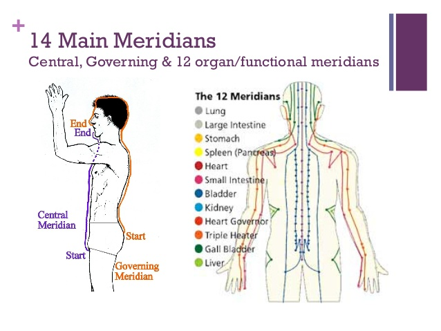 body meridian chart governing vessel conception vessel acupuncture