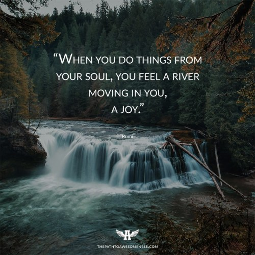 When you do things from your soul, you feel a river moving in you, a joy Rumi