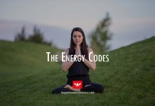 the energy codes sue morter
