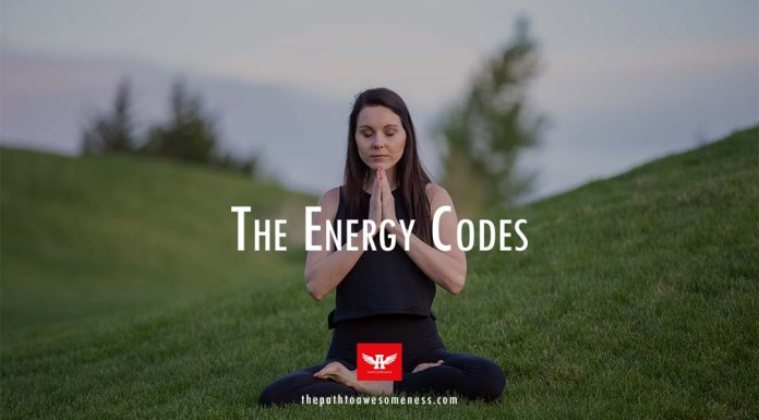 the energy codes sue morter