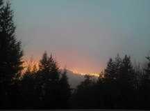 Fire in the Distance
