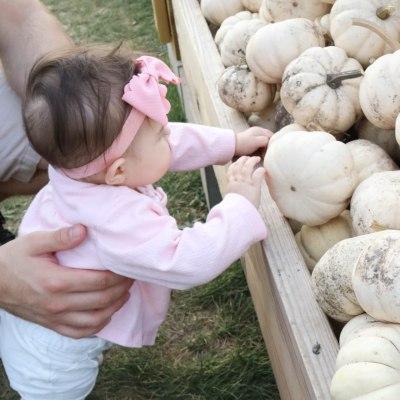 Baby Girl Fall Finds + Pumpkin Patch