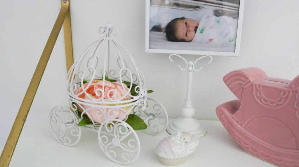 Baby Girl Nursery - Decor