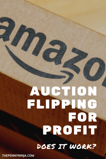 Making Money From Auction Flipping
