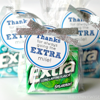 Give Extra this Holiday Season - Gift Idea + Free Printable Tag