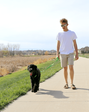 20 Minutes of Outdoor Activity - Walking Our Dog