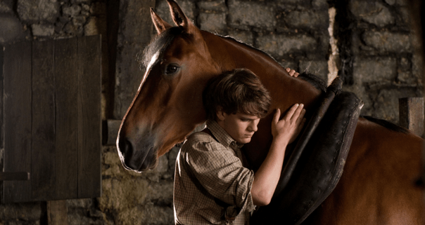 'Saddle Up' And Watch The New War Horse  Full Trailer
