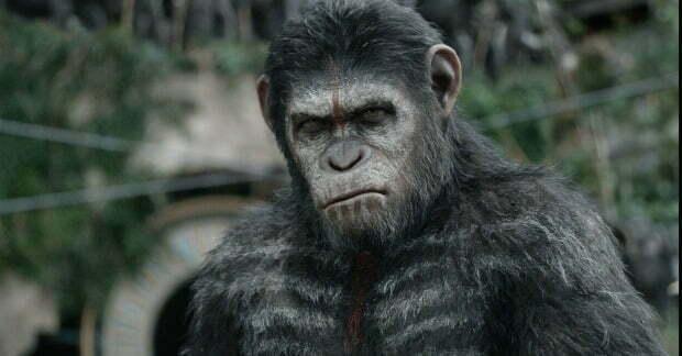 dawn-of-the-apes-caesar