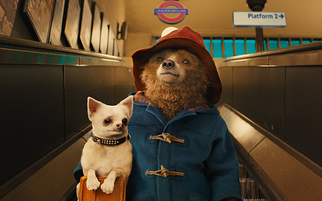 Film Review – Paddington (2014)