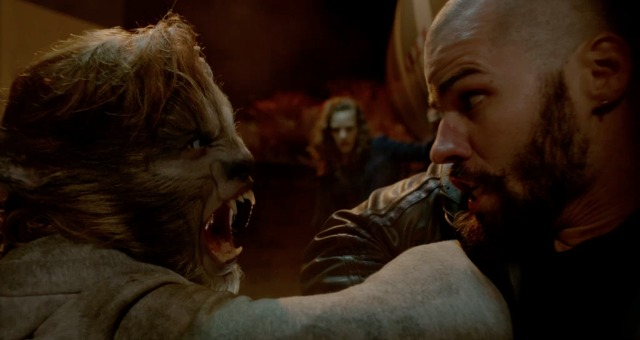 DVD Review – Wolves (2014)