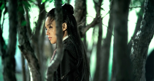 DVD Review – The Assassin