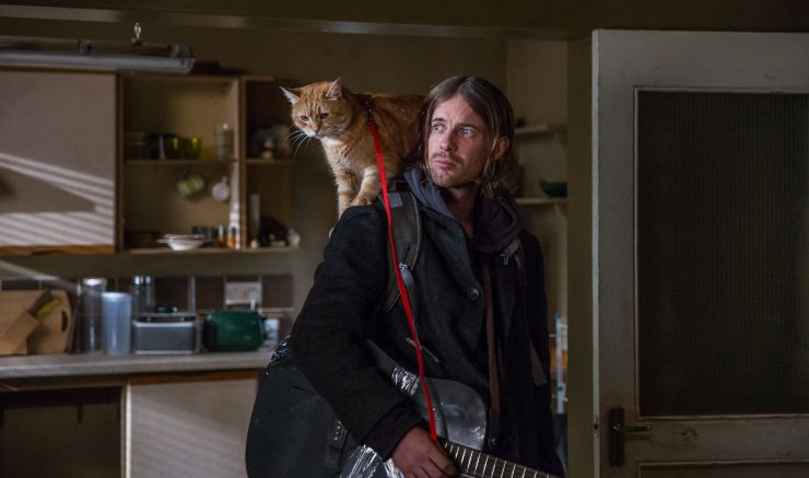 Purrrfect! A Gift From Bob Sequel To A Street Cat Called Bob Starts Filming!