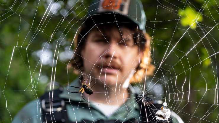 9 New Tales Of Terror As Shudder Release Creepshow Season 2 Trailer