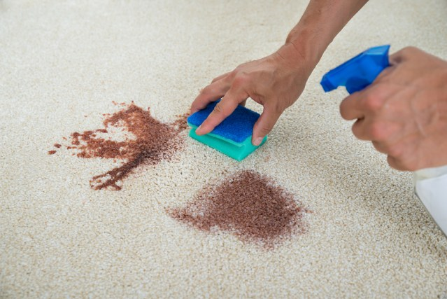 Is Carpet Stain Removal Melbourne Service Expensive?