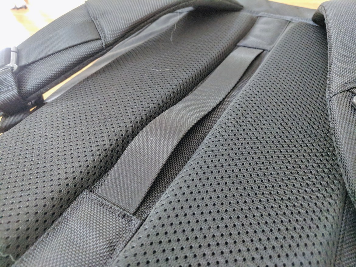 Aer Travel Pack 2 luggage strap and back panel padding view