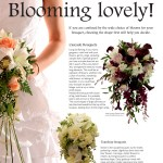 The Perfect Wedding Issue 7 Contents page 37