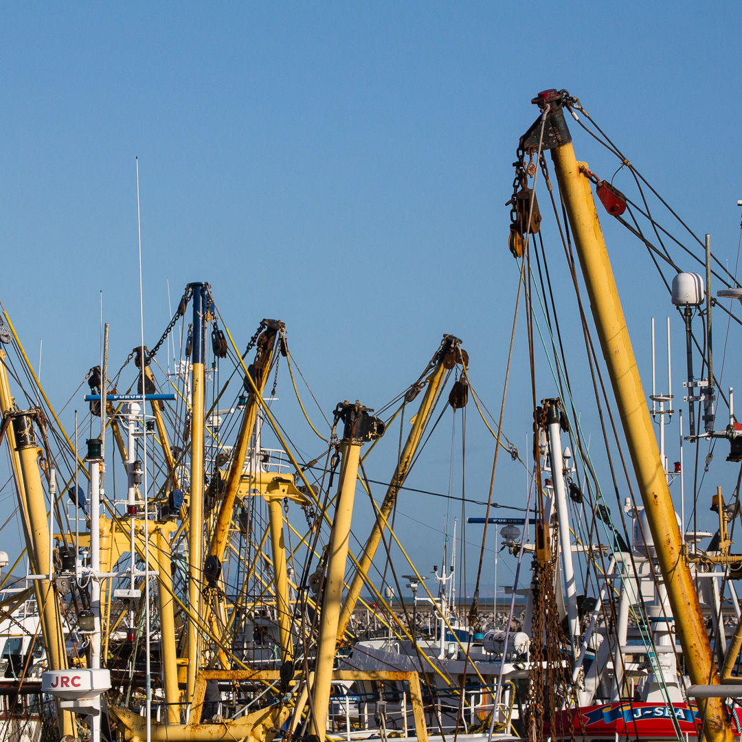 Fishing trawlers, Brixham harbour, Devon.