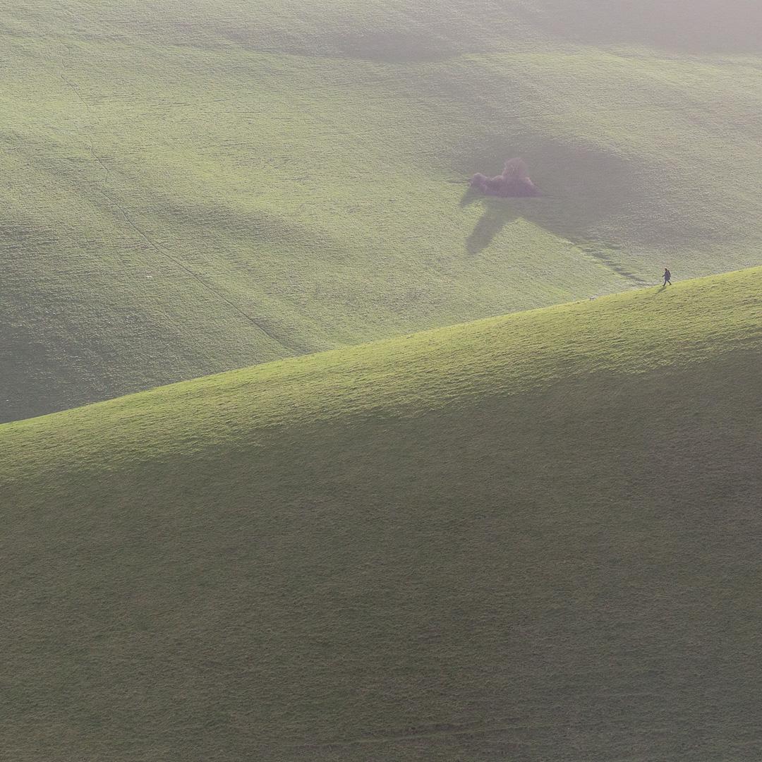Woodhuish fields, Devon.