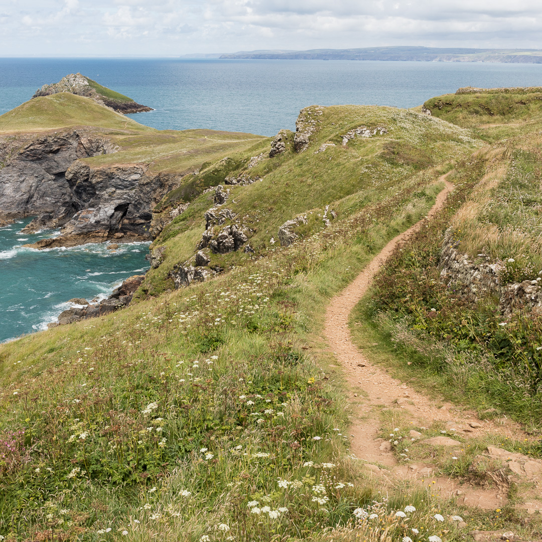 Coast path to The Rumps, an iron age fort, Cornwall.