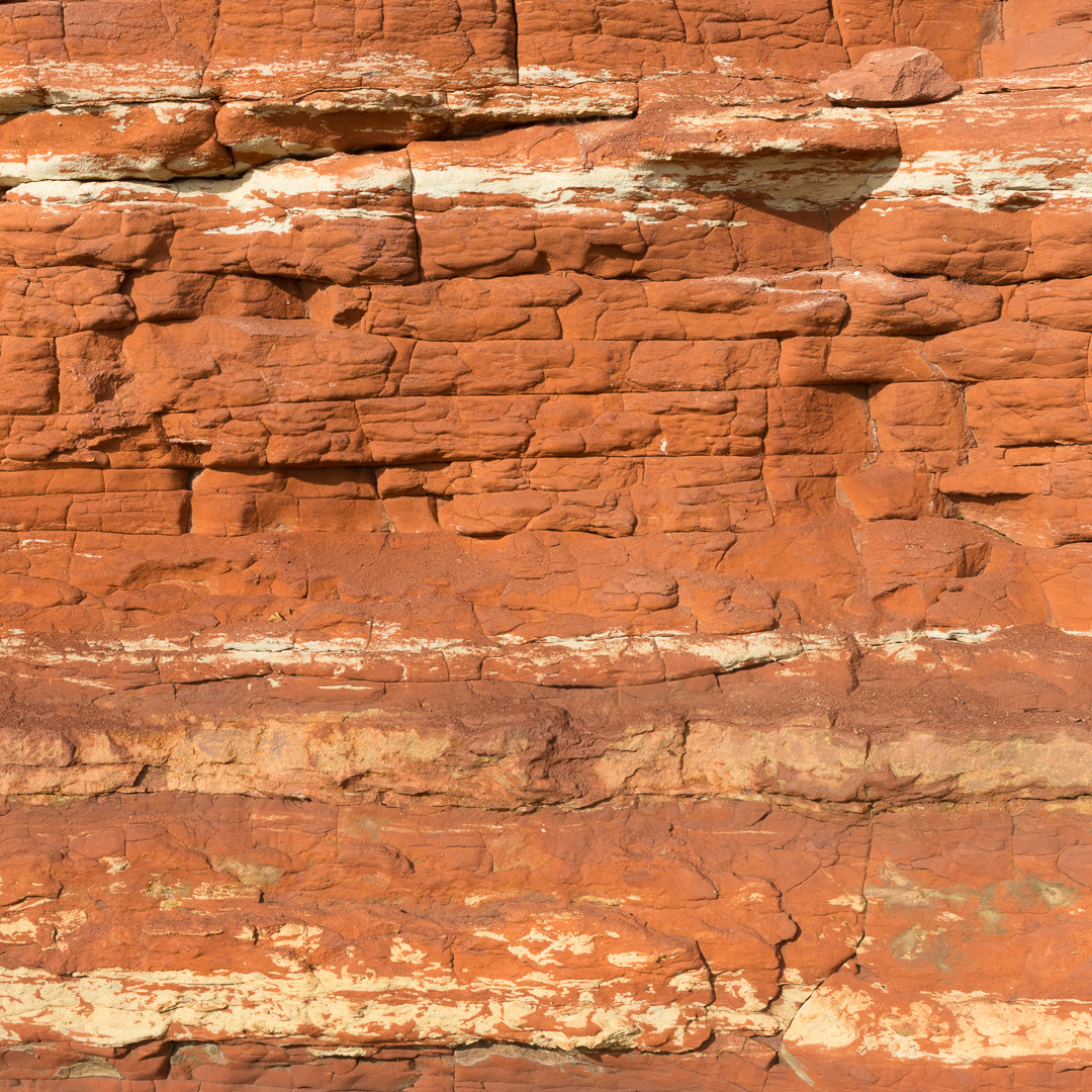 Mercia Mudstone cliff near Black Rock, Portskewett, Gwent.