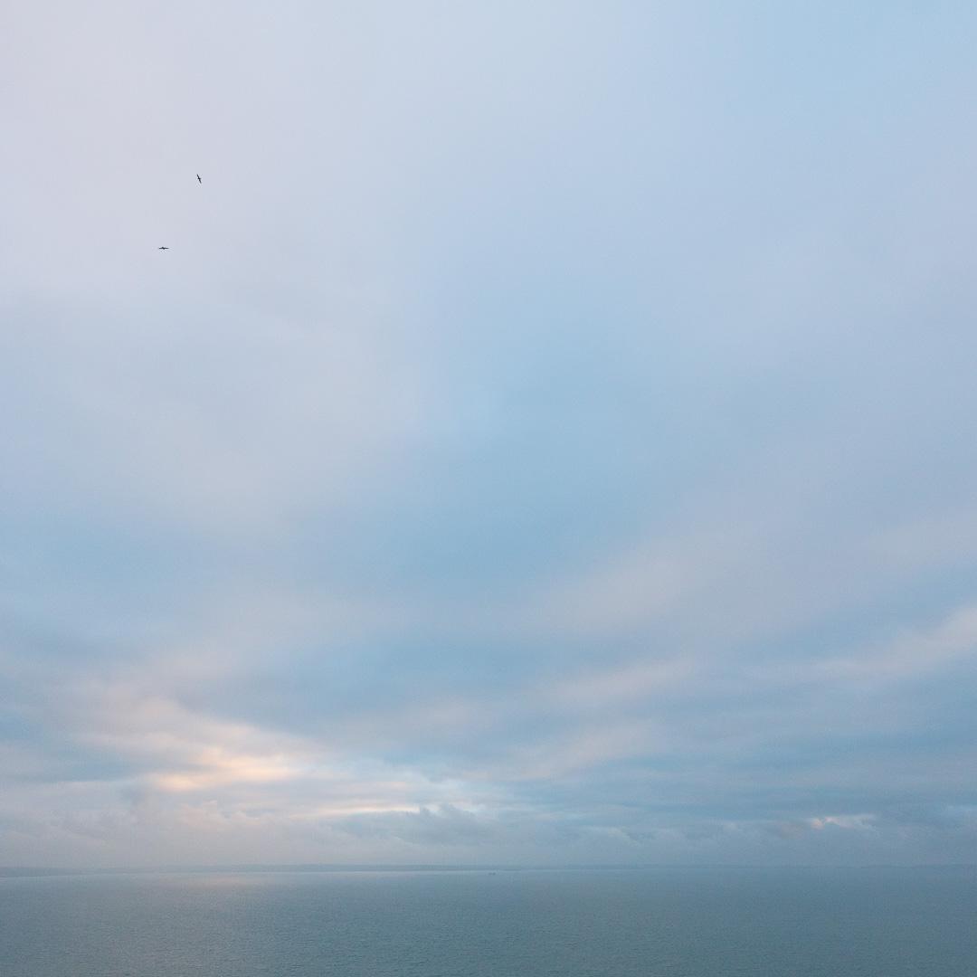 Flight, St Bride's Bay, Pembrokeshire.