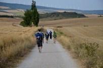 The Camino 13