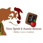 New Spirit 4 Aussie Rescue