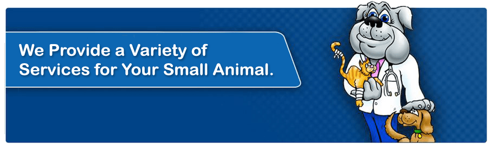 The Pet Doctor Small Animal Services