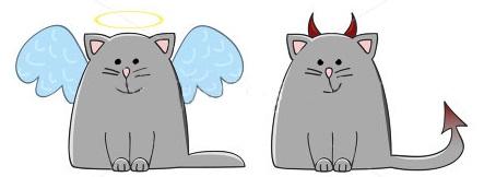 angel devil cat