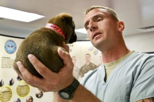 vet with pup
