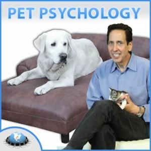 Warren Eckstein 1st Pet Psyhology