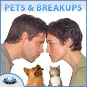 petsbreakupswebinarjpg.