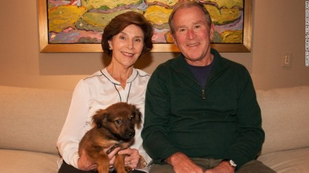 bush adopts pup