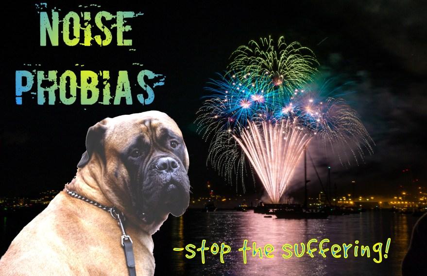 noise phobias