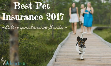 Best Pet Insurance of 2017