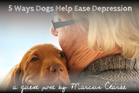 5 ways dogs help ease depression
